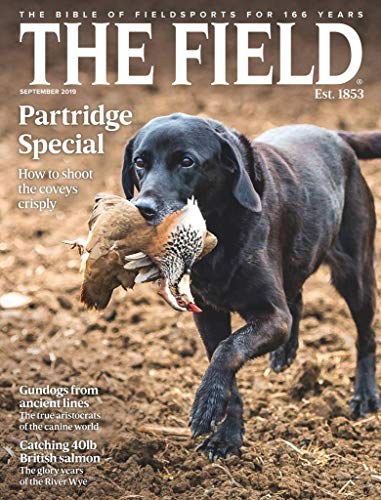 The Field UK
