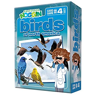 Professor Noggin's Birds of North America Trivia Card Game - an Educational Trivia Based Card Game for Kids - Trivia, True or False, and Multiple Choice - Ages 7+: Toys & Games