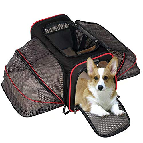 Authely Pet Carrier Airline Approved, Soft-Side Expandable Cat Travel Crate Carrier Dog Kennel Perfect for Puppies Kittens Small/ Medium Sized Animals. Enjoy Your Trips with Lovely ()