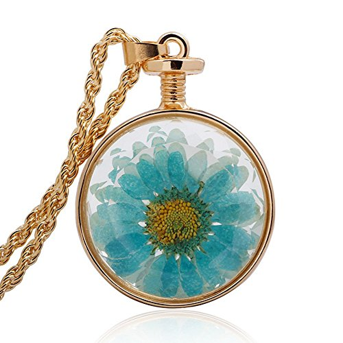 Price comparison product image Winter's Secret Gold Color Circle Shape Glass Pendant Necklace Blue Dried Flowers