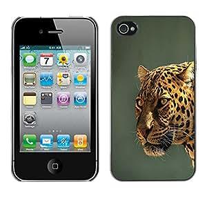 Paccase / SLIM PC / Aliminium Casa Carcasa Funda Case Cover para - Leopard Yellow Teal Grey Feline Big Cat - Apple Iphone 4 / 4S