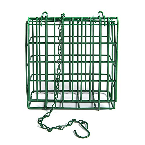 Kaytee Feeder Station for Suet Wild Bird Feeder - Seed Suet Holder