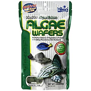 Hikari Usa Inc AHK21328 tropical Algae Wafer 8.8-Ounce 94