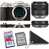 【クリーナー・SD・カメララップ付】キヤノン ミラーレスカメラ EOS RP(ゴールド)・RF35 MACRO IS STM マウントアダプターSPキット EOSRPGL-35MISMADK (3381C004)(キャノン/Canon)