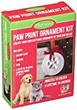 Santa's Lucky Dog Memory Paw Print Ornament Kit