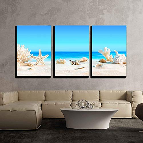 Seashells on Tropical Beach Wall Decor x3 Panels