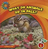 What Do Animals Do in Fall?, Rebecca Felix, 1610809076