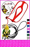 The AVIATOR Pet Bird Harness and Leash: Large Pink