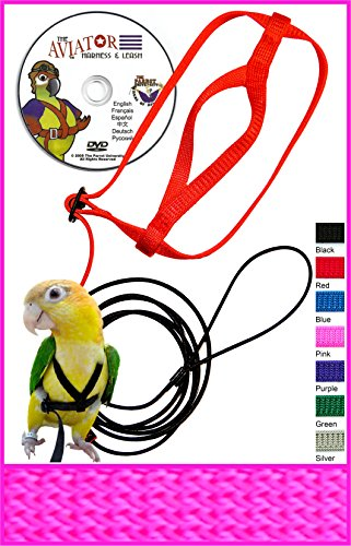Pink Bird Harness - 1