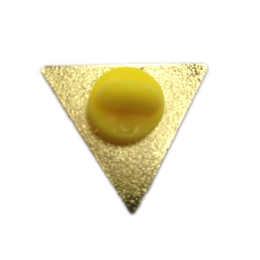 Amazon.com: Rainbow Pride Flag Triangle Gold Plated - Lapel or Fabric Pin:  Jewelry
