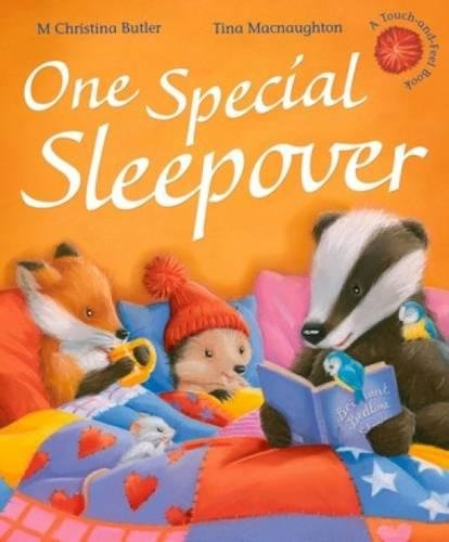 One Special Sleepover PDF