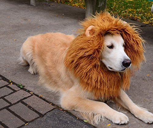 HTKJ Dog Lion Mane Costume Cute Adjustable Washable Pet Wig Hat for Dog Clothes Dress up Halloween Christmas Easter Festival Party Activity (Dog-Brown with ear) by HTKJ (Image #7)