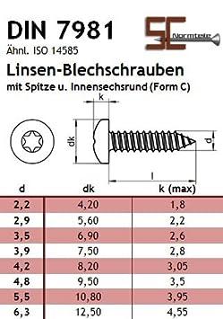 SC7981 ISO 14585 - DIN 7981 Blechschrauben mit Linsenkopf 4,8x19 - - Edelstahl A2 V2A mit Spitze - Form C Innensechsrund Antrieb TX 20 St/ück -
