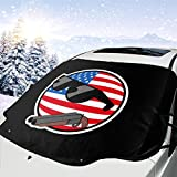 Polandball Car Windshield Snow Cover Fits Most
