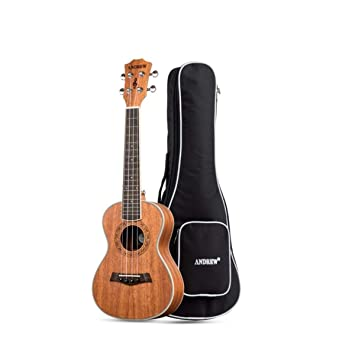 CHUJIAN Ukelele, Ukelele 23 Pulgadas, Guitarra Pequeña ...