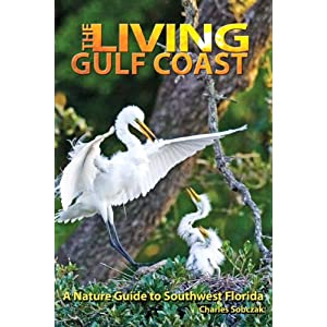 The Living Gulf Coast: A Nature Guide to Southwest Florida Charles Sobczak, n/a, Sara Lopez and Dick Fortune