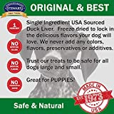 Stewart Pro-Treat Duck Liver Freeze Dried Dog