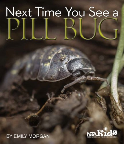 Next Time You See a Pill Bug ebook