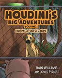 img - for Houdini's Big Adventures: Finding a Forever Home book / textbook / text book