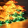 LIDORE 100 Counts Super Bright Clear Mini Christmas tree Lights. Best Gift for Decoration. End to End Connection. Set of 100
