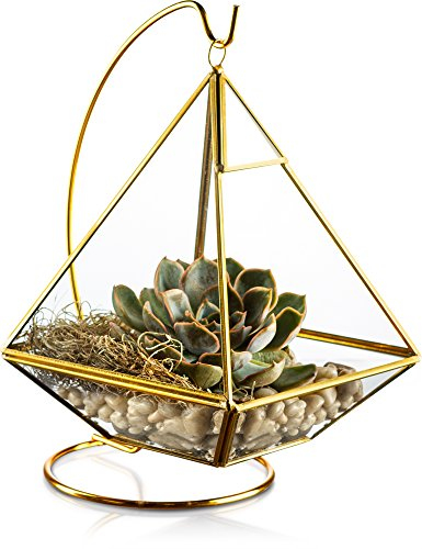 KooK Geometric Pyramid Hanging Terrarium with Stand – Gold