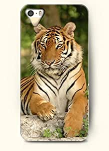OOFIT Phone Case Design with Tiger Lying on the Stone for Apple iPhone 5 5s