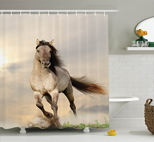 Ambesonne Animal Decor Collection, Wild Young Stallion Horse Running at Sunset Male Power Nake Muscular Physique Nobility Photo, Polyester Fabric Bathroom Shower Curtain Set with Hooks, - Girl Nake Teen