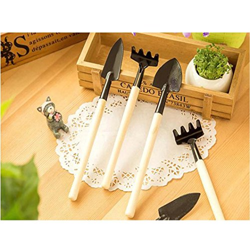 dayseventh-3pcs-plant-seedlings-transplant-seedlings-great-gardening-tools-move-in-soil-3