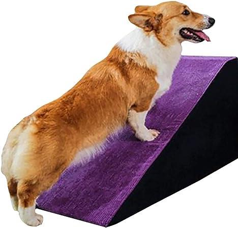 Escalera de Mascota Perro Rampa Escalera for sofá for Perros medianos/pequeños y portátiles Escalera Animales Pasos for el Dormitorio de la Sala, Carga 15 kg (Color : Purple, Size : 85×40×40cm): Amazon.es: