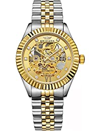 Swiss Brand Nice Classic Luxury Gold Hollow Mechanical Automatic Men's Watch