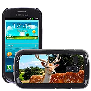 Super Stella Slim PC Hard Case Cover Skin Armor Shell Protection // M00103733 Deer Antlers Animals // Samsung Galaxy S3 MINI i8190