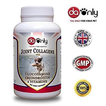 Antiinflamatorio para perros, NUEVA FORMULA glucosamina, condroitina y colágeno, magnesio y vitaminas,