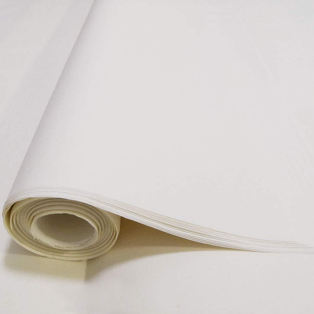 LSHY Handmade Xuan Paper Scroll Maobian Acquerello Carta di riso grezza Rotolo bianco per bambini Inchiostro cinese Giapponese Kanji Calligraphy Painting Disegno Pratica 10 fogli 68 x 138 cm