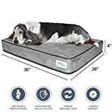 PetFusion SerenityLounge Dog Bed (Large - 36x28x 4