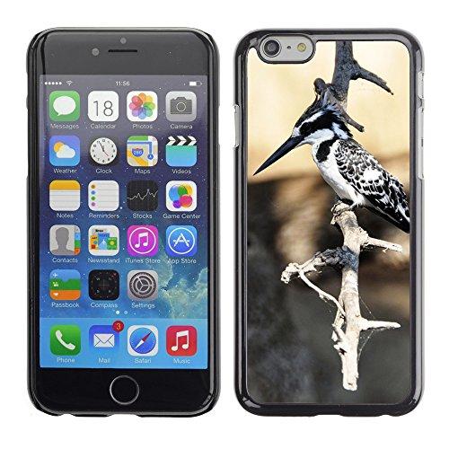 """Just Phone Cases Hard plastica indietro Case Custodie Cover pelle protettiva Per // M00128269 Kingfisher Oiseau Oiseau aquatique // Apple iPhone 6 PLUS 5.5"""""""