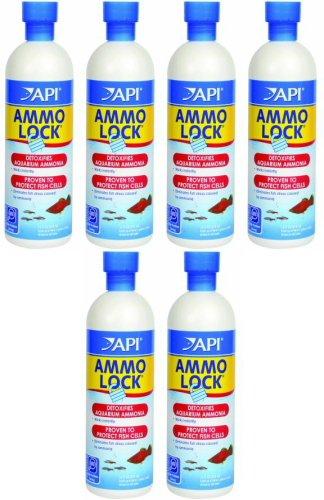 API Ammo Lock 96oz (6 x 16oz) -