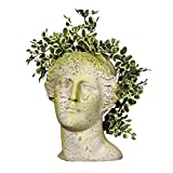 "Orlandi Venus Head Garden Planter 14""H For Sale"
