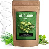 10 Culinary Herb Seed Vault - Heirloom and Non GMO - 3000 Plus Seeds for Planting for Indoor or Outdoor Herbs Garden, Basil, Cilantro, Parsley, Chives, Thyme, Oregano, Dill, Marjoram, Mint, Tarragon