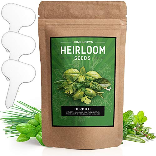 10 Culinary Herb Seed Vault - Heirloom and Non GMO - 3000 Plus Seeds for Planting for Indoor or Outdoor Herbs Garden, Basil, Cilantro, Parsley, Chives, Thyme, Oregano, Dill, Marjoram, Mint, Tarragon (Cilantro Seeds Organic)