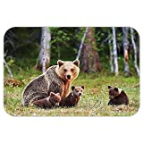 VROSELV Custom Door MatNature Decor Wild Mother Grizzly Bear Protecting Her Babiein Forest Jungle Animal Print Green Brown