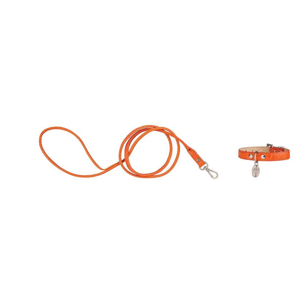 HaberHauer Collection Ostrich Leather Designer Dog Collar & Leash Set, Small 10-13 inch. Orange