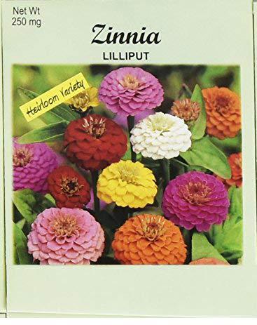 (Set of 100 Flower Seed Packets! Flower Seeds in Bulk (100, Zinnia Cali Giant) )