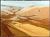 Desert Wash Picture