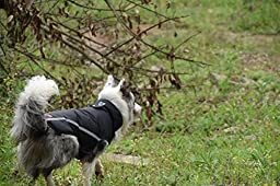 MY PET Clothes for Small Medium Dogs Large Breed Pitbull Waterproof And Warm Coat Jacket Outdoor Safety Raincoats with Reflective Article Plaid Winter Autumn Velcro Soft Black