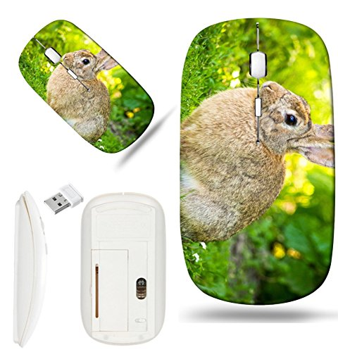 - Luxlady Wireless Mouse White Base Travel 2.4G Wireless Mice with USB Receiver, 1000 DPI for notebook, pc, laptop, mac design IMAGE ID 21394682 Rabbit silhouette on green lawn