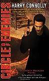 Circle of Enemies: A Twenty Palaces Novel