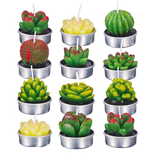 eKoi 12 PC Bulk Gift Mini Cute Succulent Cactus Bloom Tealight Candle for Home Classroom Office Party Fake Nature Garden Themed Décor