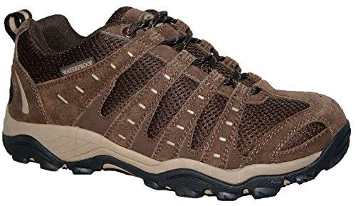 Montana Senderismo Shoe Impermeable pino Territory Ladies Totalmente Northwest Marrón Cordones senderismo Trainer UwxHAqYE