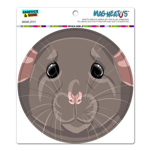 Dumbo Rat - Graphics and More Dumbo Rat - Pet Mouse Rodent Circle Automotive Car Refrigerator Locker Vinyl Magnet