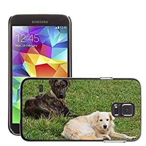 GoGoMobile Slim Protector Hard Shell Cover Case // M00123279 Dog Animals Domestic Animals Pet // Samsung Galaxy S5 S V SV i9600 (Not Fits S5 ACTIVE)